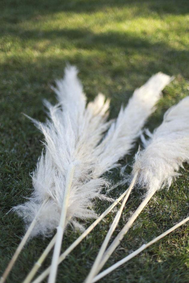 Pampass Grass Decor