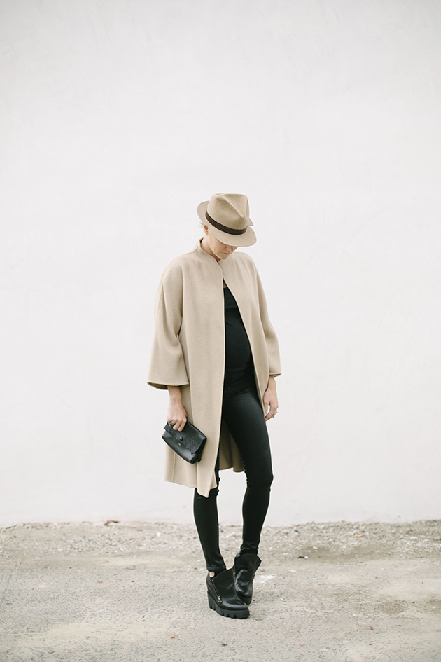 Camel for Fall