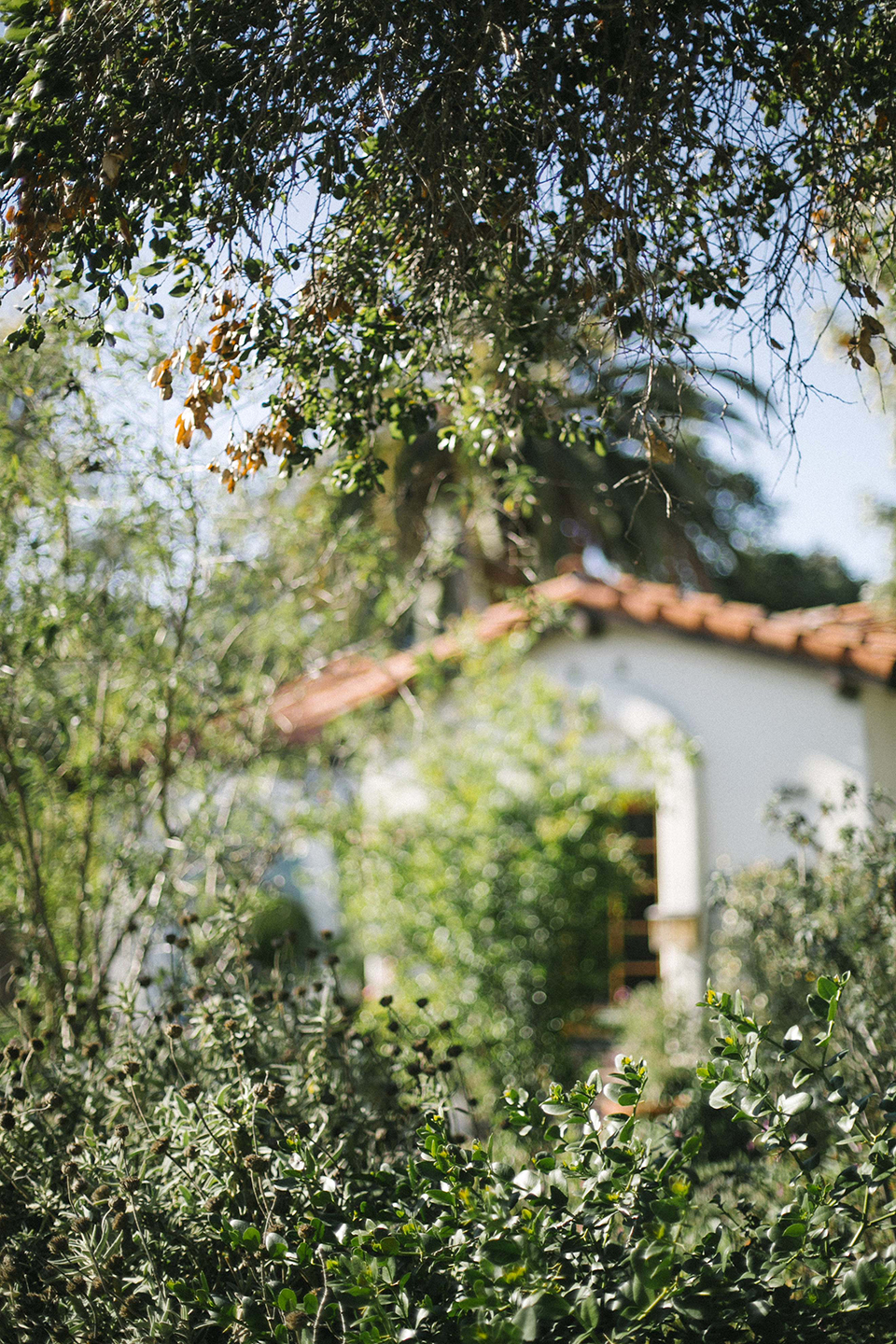 could_i_have_that_ojai_066